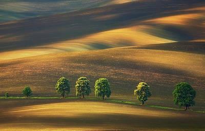 Dirt Photograph - Line... by Krzysztof Browko