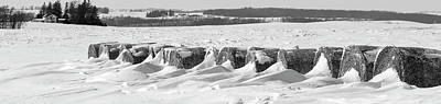 Cold Temperature Photograph - Line Of Bales Drifted With Snow by Panoramic Images