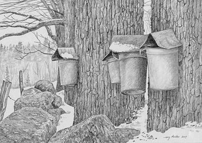 Line Of Sap Buckets Art Print
