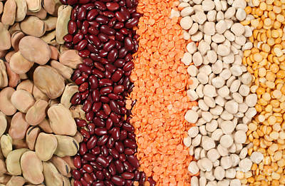 Photograph - Line-up Of Pulses by Paul Cowan