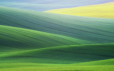 Rolling Hills Photograph - Lines by Ales Komovec