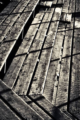 Photograph - Lines by Caitlyn  Grasso