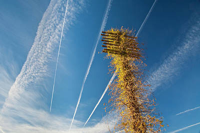 Telephone Poles Photograph - Lines In The Sky by Mark Weaver