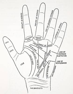 Palm reading drawings fine art america palm reading drawing lines of the hand by english school m4hsunfo