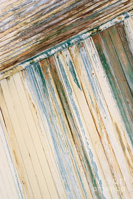Photograph - Lines by Tamara Becker