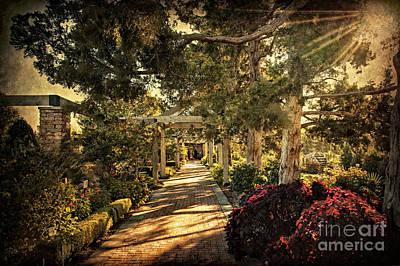 Photograph - Linnaeus Teaching Garden by Tamyra Ayles