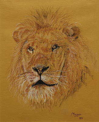 Painting - Lion by Alan Mager
