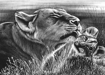 Animals Drawings - Lion and Cub by Jerry Winick