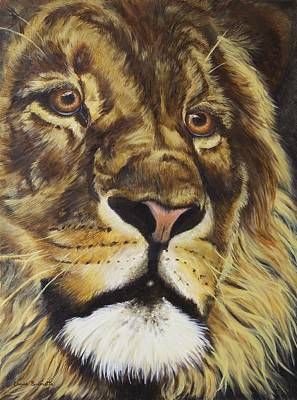 Warm Tones Drawing - Lion by Christine Brunette