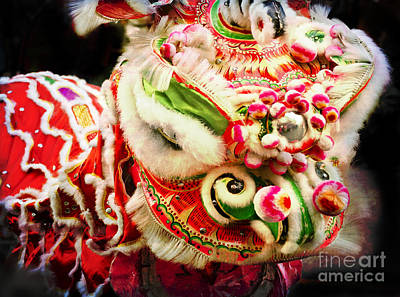 Photograph - Lion Dancer by Maria Janicki