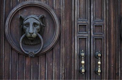 Lion Door Art Print