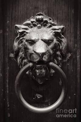 Lion Door Knocker Print by Carol Groenen