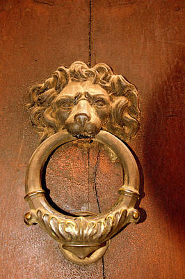 Photograph - Lion Door Knocker I I  Florence by Caroline Stella