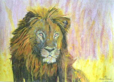 Lion Art Print by Dylan Williams