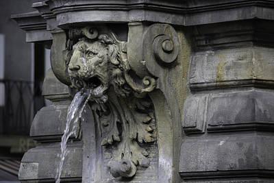 Lion Fountain Art Print