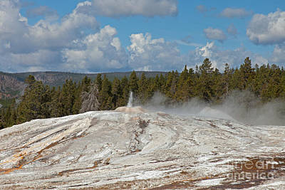 Photograph - Lion Geyser Group In Upper Geyser Basin by Fred Stearns