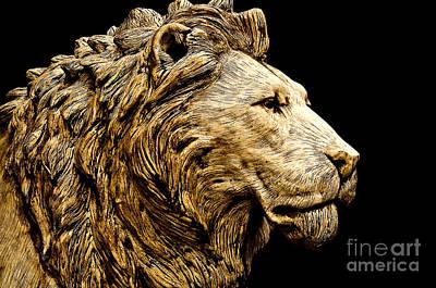 Marble Animal Figures Photograph - Lion Head by Daniela White