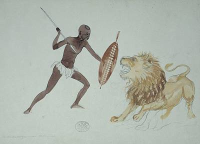 Lion Hunting, Artwork Art Print by Science Photo Library