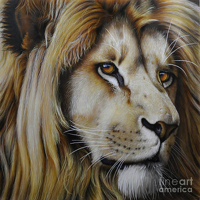 African Cats Painting - Lion by Jurek Zamoyski