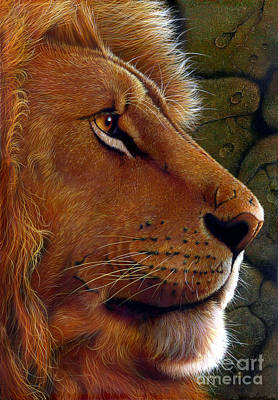 Wild Cat Painting - Lion King by Jurek Zamoyski