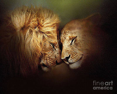 Robert Foster Painting - Lion Love by Robert Foster