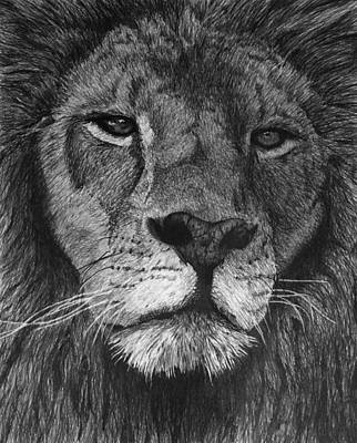 Lion Of Judah Art Print by Bobby Shaw
