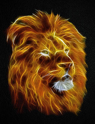 Lion Digital Art - Lion Portrait by - BaluX -