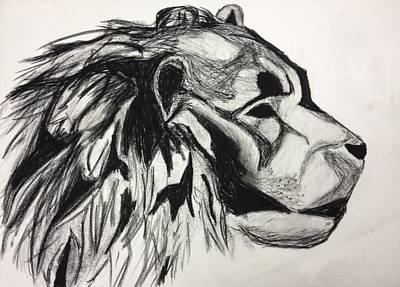 Charcoal Drawing - Lion Profile by Freddie Grovin