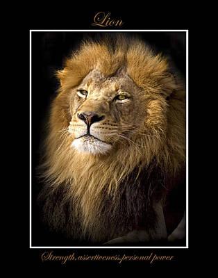 Photograph - Lion Symbol Of by Marty Maynard