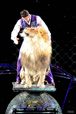 Photograph - Lion Tamer 1 by Teresa Blanton