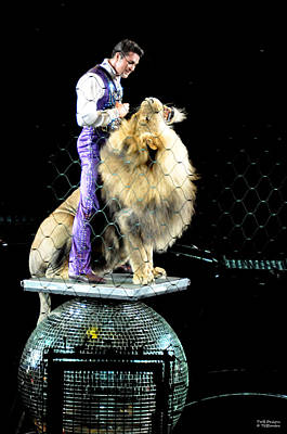Photograph - Lion Tamer 2 by Teresa Blanton