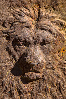 Relief Photograph - Lion Wall by Garry Gay