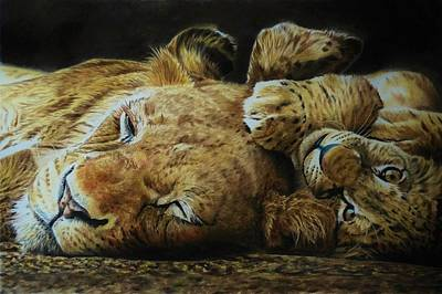 Wall Art - Painting - Lioness And Cub by Julian Wheat