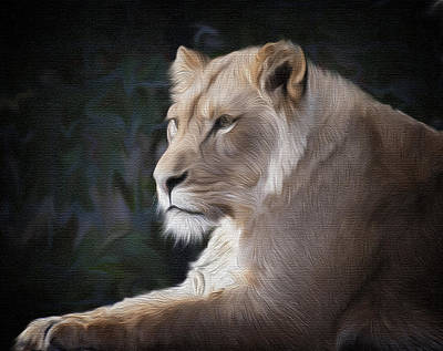 Painting - Lioness by Kathy Williams-Walkup