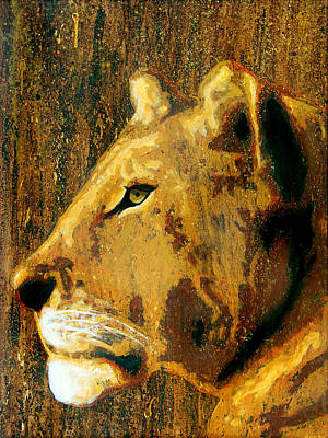 Negative Space - Lioness by Steve Gamba