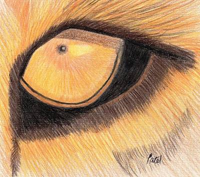 Lions Eye Art Print by Bav Patel