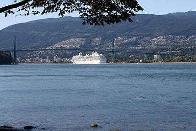Photograph - Lions Gate Bridge by Betty-Anne McDonald