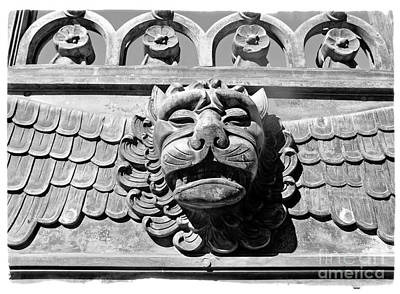 Art Print featuring the photograph Lions Head by Carsten Reisinger