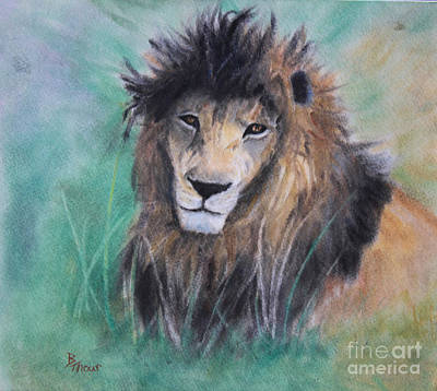 Pastel - Lion's Royal Gaze by Brenda Thour