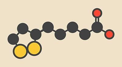 Lipoic Acid Enzyme Cofactor Molecule Art Print by Molekuul