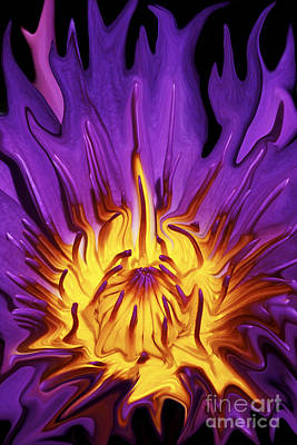 Purple Flowers Digital Art - Liqufied Water Lily by Paul W Faust -  Impressions of Light