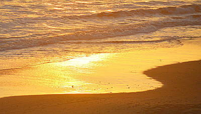 Photograph - Liquid Sun by AJ  Schibig