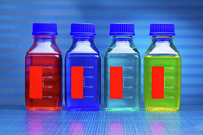 Liquids In Bottles Art Print by Wladimir Bulgar
