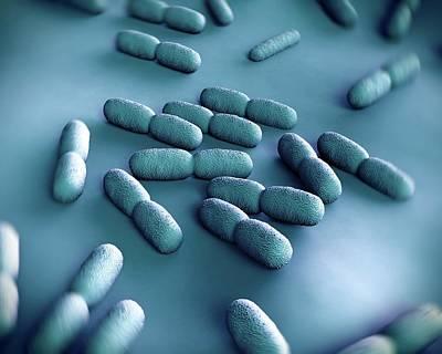 Listeria Bacteria Art Print