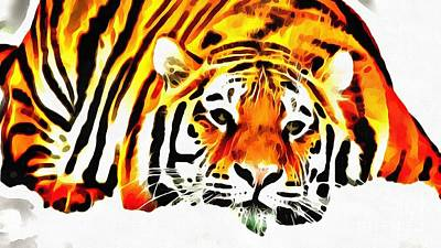 Painting - Lit Tiger Resting by Catherine Lott