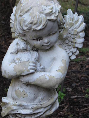 Art Print featuring the photograph Little Angel by Beth Vincent