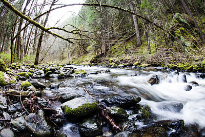 Photograph - Little Applegate River by Crystal Cox