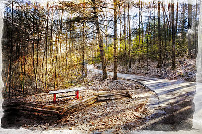 Little Bench By The Little Path Art Print by Debra and Dave Vanderlaan