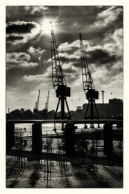 Photograph - Little Big Cranes by Lenny Carter