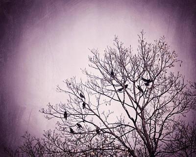 Little Birds Of The Night Art Print by Carolyn Cochrane